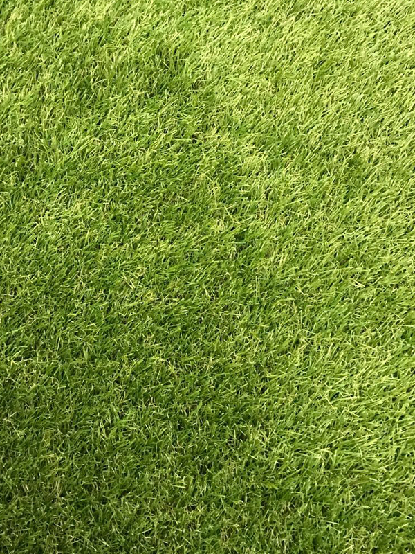 Stadium Lawn Carpet Artificial lawn 34mm 200×500 cm  eBay